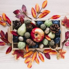 autumn-elements-and-fruits-in-wooden-box_23-2147881166